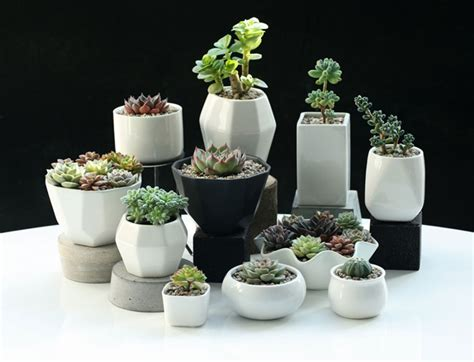 pots for plants top stunning low budget diy garden pots and containers