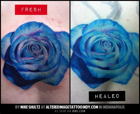 tattoo healing questions bodywork forum bodmods