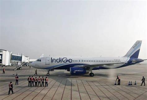 indigo plans low cost haul international flights