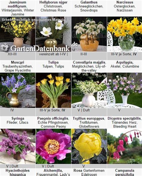 Schnittblumen Im Garten
