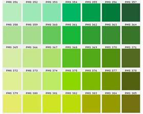 color chartreuse pms 376 for chartreuse wedding inspirations