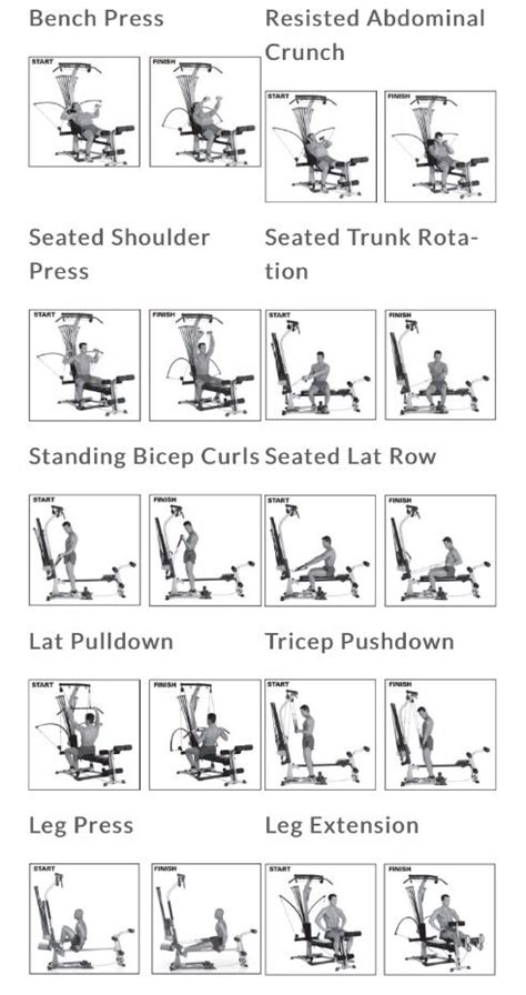 best 25 bowflex workout ideas on cable