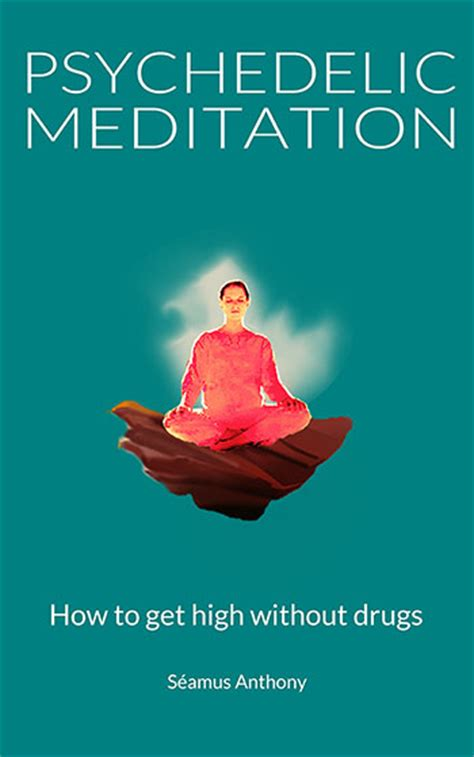 meditation without bullshit a guide for rational books psychedelic meditation rebel zen