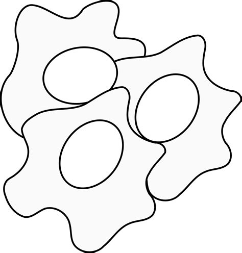 fry egg coloring page egg black and white clipart clipart suggest