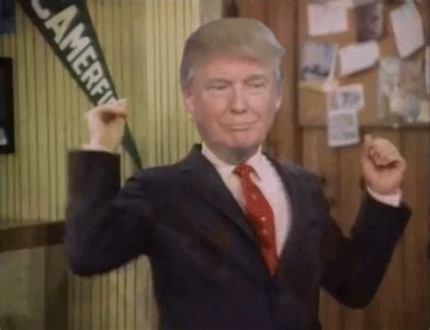 donald trump wrong gif donald trump gifs find share on giphy