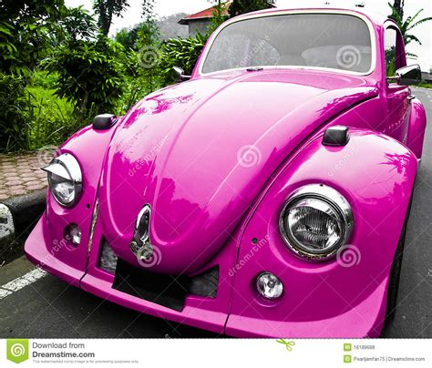 pink car beetle stock photo image  driver funny