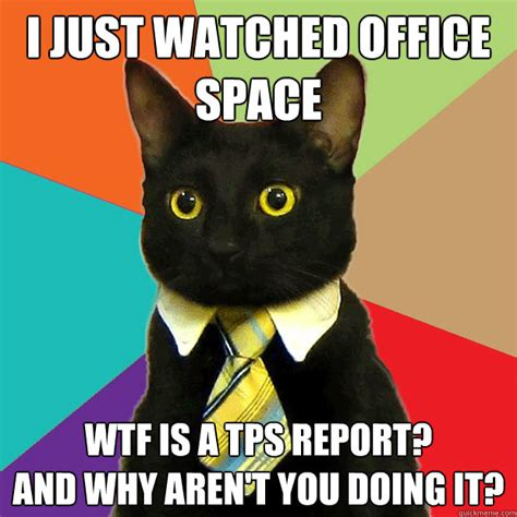 Office Cat Meme - i just watched office space cat meme cat planet cat planet