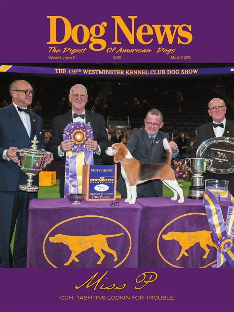 benched show benched dog show 100 benched dog show 18 westminster best in show