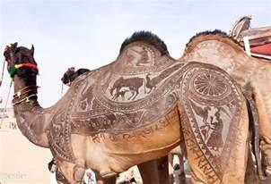 camel detailing in india pics