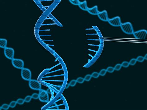 Modification Utation by Researcher Finds Diabetes Related Mutation In Mexican
