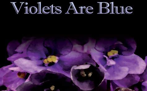 violets are blue grace gibson shop