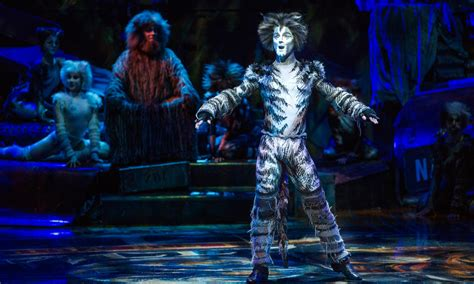 cats musical review cats the musical indaily