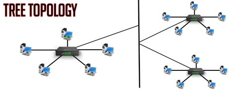 tree topology diagram tree topology learnabhi