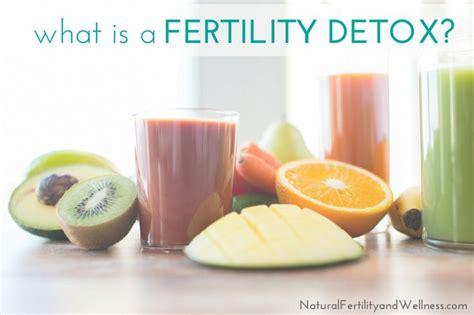 Fertility Detox by 1000 Ideas About Fertility Foods On Fertility