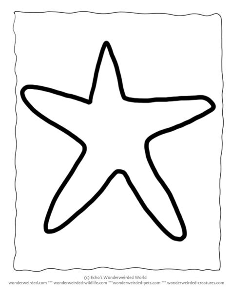 templates for under the sea creatures printable starfish template echo s free starfish outline