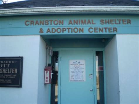 puppy stores in ri cranston animal shelter lands 3 500 donation from pet store cranston ri patch