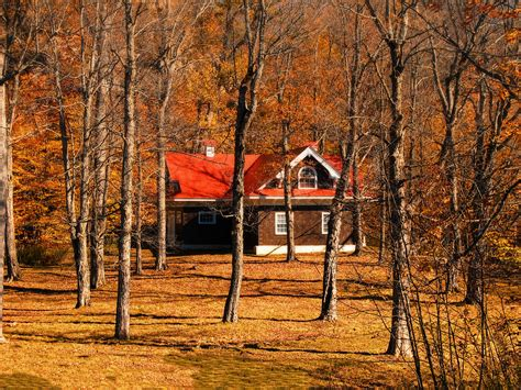 Large Cottage House Plans Secluded Red Roof Cottage In An Autumn Scene Photograph By