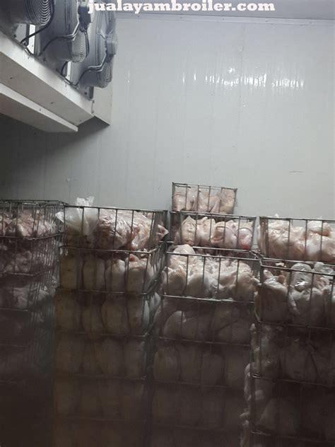 Jual Cermin Jakarta Timur jual ayam broiler di kayu manis jakarta timur jual ayam