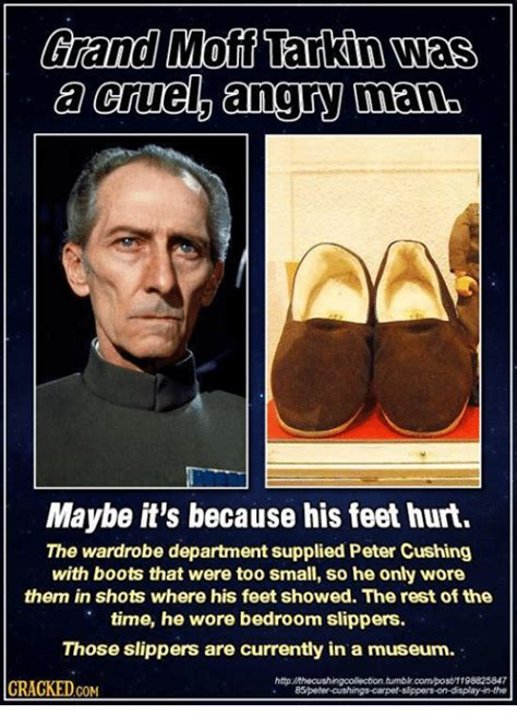 grand moff tarkin slippers cushing memes of 2017 on sizzle you may be
