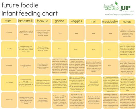 baby feeding chart infant feeding chart on baby feeding schedule