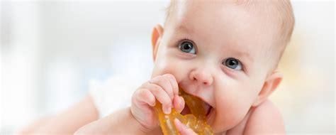 wann zahnen babys zahnen die ersten z 228 hne beim baby netdoktor at