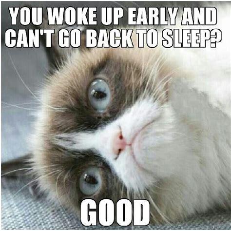 Grumpy Cat Sleep Meme - back to sleep grumpy cat pinterest