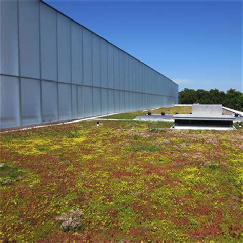 lightweight green roof 0 4 or 0 1 12 sempergreen free bim object bimobject