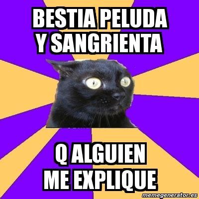 Anxiety Cat Meme Generator - meme anxiety cat bestia peluda y sangrienta q alguien me
