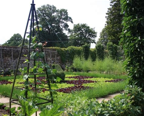 5 Tips For A Beautiful And Productive Vegetable Garden Attractive Vegetable Garden
