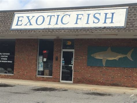 exotic fish pet stores 406 northside dr valdosta ga