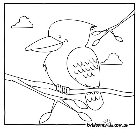 kookaburra coloring page free australian animals colouring pages brisbane kids