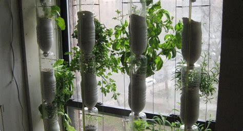 window gardening what is an urban window garden how to make a hydroponic