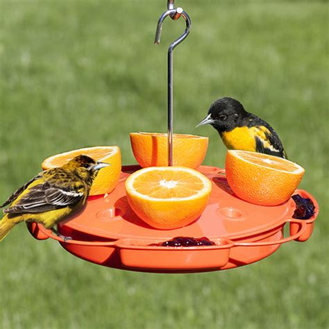 duncraft com ultimate oriole feeder