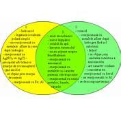 CARACTERISTICILE SPECIFICE SI COMUNE ALE HCl HNO3