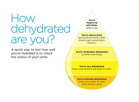 hydration quiz questions keeping hydrated health information bupa uk
