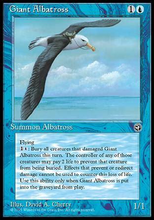testo l albatro maggiori informazioni su albatro gigante albatross