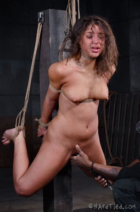 Abella Danger Hardtied Pictures Collection