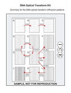 Dna Research Paper Pdf by Dna Research Paper Pdf Writinghtml Web Fc2