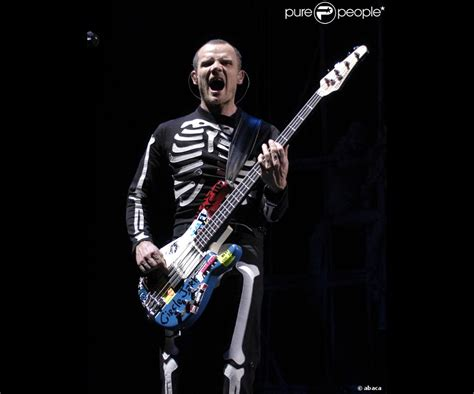 Flea Chili Peppers Bassist Loses Home In Malibu by Flea Le Bassiste Des Chili Peppers Victime Des