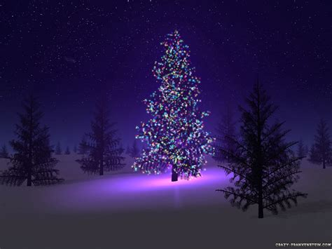 beautiful christmas trees wallpaper backgrounds beautiful christmas trees