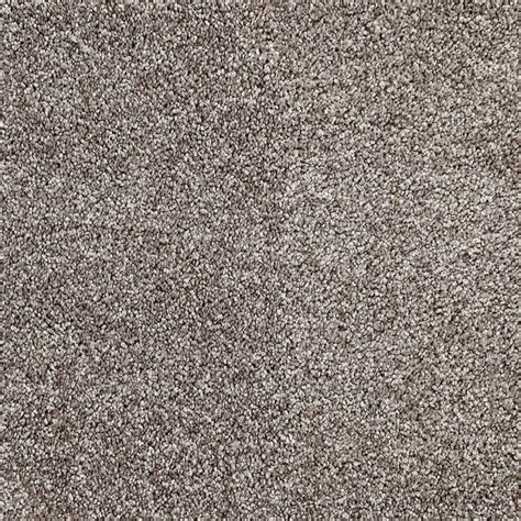 this charming carpet is the carpet court item