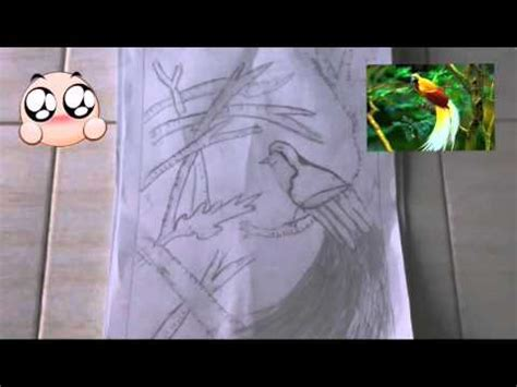 tutorial gambar burung full download cara menggambar bagian 64 burung cendrawasih