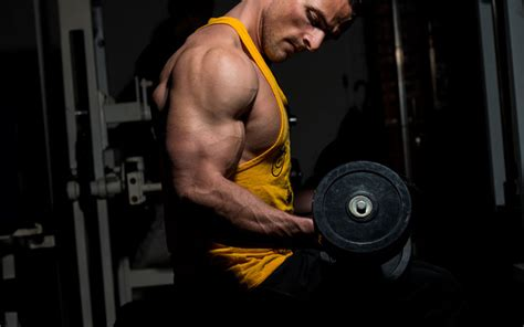 10 Bodies To Remember When Working Out by 10 Must Try Unconventional Bicep Exercises For Arm Day
