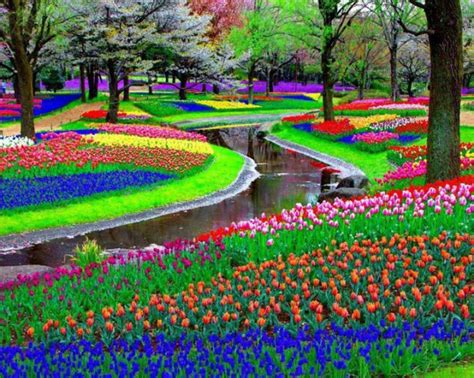 Netherland Flower Garden The Netherlands The World S Flower Garden 011now S