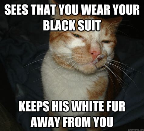 Cool Cat Meme - best of the cool cat craig meme 20 pics pleated jeans
