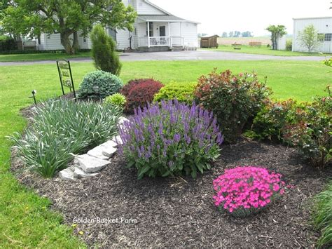 country landscaping ideas 17 best images about country garden ideas on pinterest