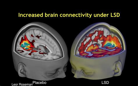 scientists reveal world s images of the human brain