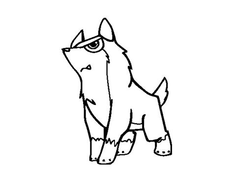 coloring page gray wolf gry wolf colouring pages