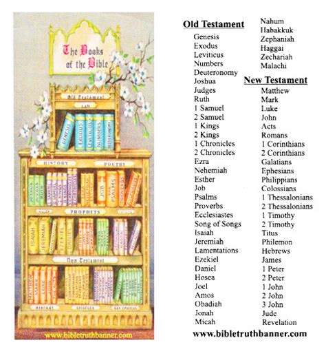 book themes of the bible free coloring pages