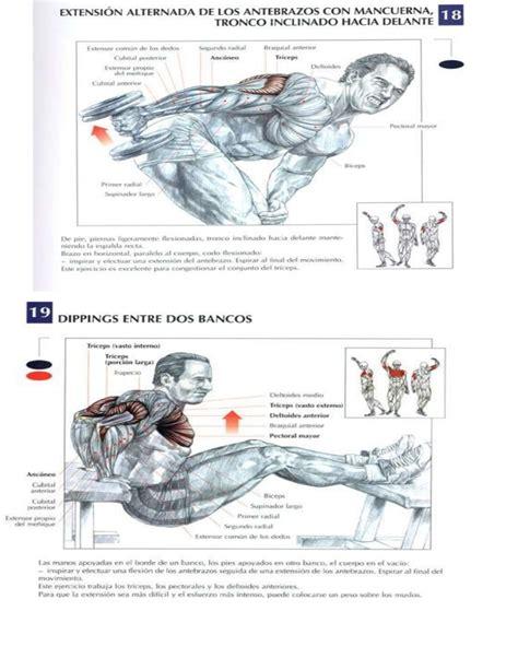tabla de ejercicios con mancuernas para hacer en casa ejercicios para gym